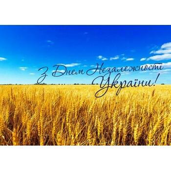 С днем Рождения Украина! тебе сегодня 29 лет!