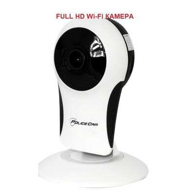 IP камера Penguin-180 FullHD: описание, характеристики